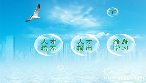 春华网页设计